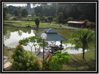 Taman Etnobotani1